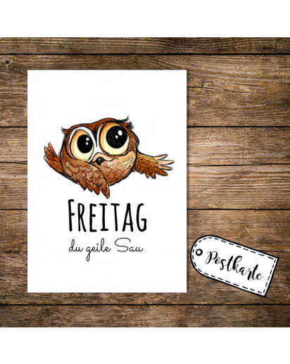 A6 Postkarte Karte Print Eule Eulchen mit Spruch Zitat Motto Freitag du geile Sau A6 postcard card print little owl with quote saying friday you horny guy pk13
