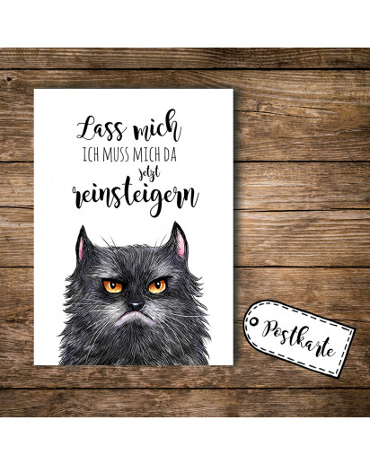 A6 Postkarte Ansichtskarte Flyer Katze grumpy cat mit Spruch lass mich A6 postcard print grumpy cat with quote saying stop bothering me pk099.jpg