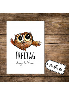 A6 Postkarte Karte Print Eule mit Spruch Freitag du geile Sau pk13