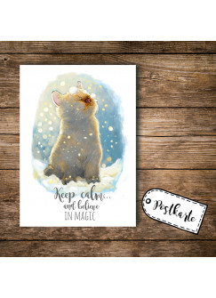 A6 Postkarte Print Katze mit Spruch keep calm and believe in magic pk098